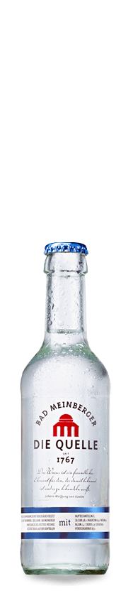 Bad Meinberger Mineralwasser Gastro klein mit Kohlensäure